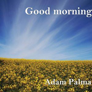 Good morning11
